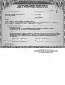 issuing our own american national private bonds negotiable international promissory note template word