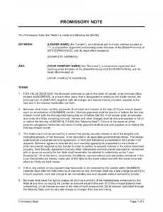 promissory note template  by businessinabox™ corporate promissory note template word