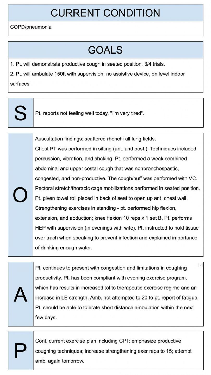sample physical therapist soap notes example  soap note notes ot progress note template example