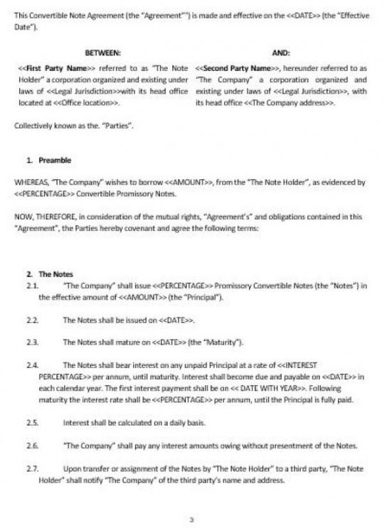 Convertible Promissory Note Template Excel