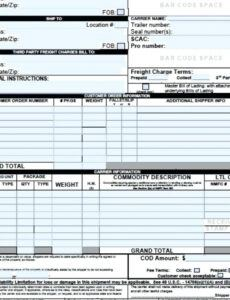 Bill Of Lading Instructions Template Excel Example