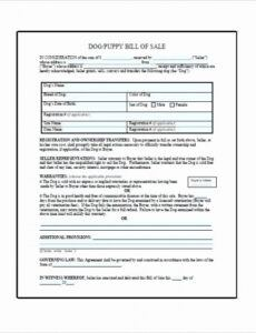 Printable Private Party Auto Bill Of Sale Template  Example